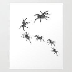 Wolf Spiders Art Print