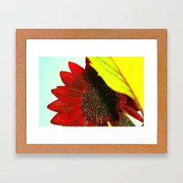 Enamored  Framed Art Print