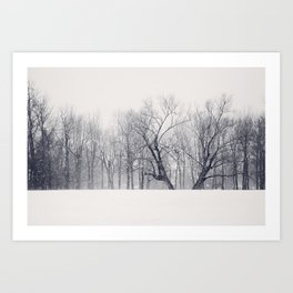 Into the Blizzard Art Print