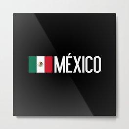 Mexican Flag & México Metal Print