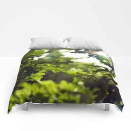Dreamy forest - Landscape Photography #society6 Comforters