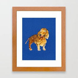 Daschund on dark blue Framed Art Print