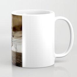 Spektrum Coffee Mug