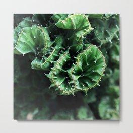 Emerald green Cactus Botanical Photography, Nature, Macro, Metal Print