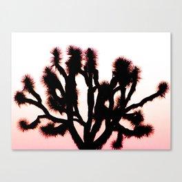 Random Joshua Tree Canvas Print