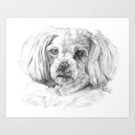 Soft Pup Art Print