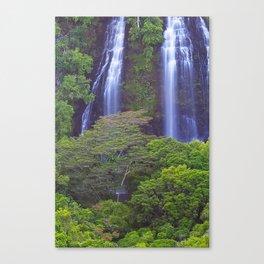 Opaekea'a Falls - Kauai  Canvas Print