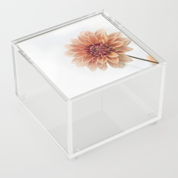 Dahlia Flower Acrylic Box