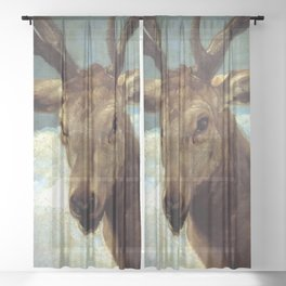 """Diego Velázquez """"Head of a Stag"""" Sheer Curtain"""