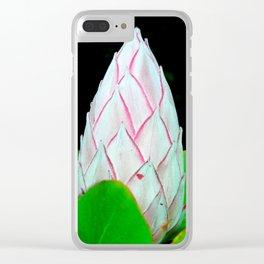 Warburton 13 Clear iPhone Case