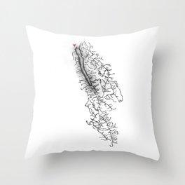 Owasco Lake Home Throw Pillow