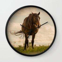 Horse In the green feild. Wall Clock