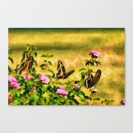 Three Giant Swallowtails - Monet Style Canvas Print