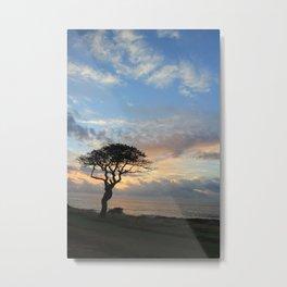 Lone Tree in Hawaii Metal Print