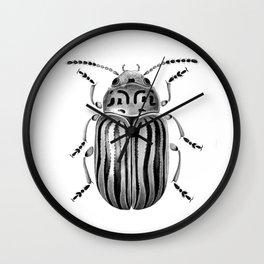 Beetle 06 Wall Clock