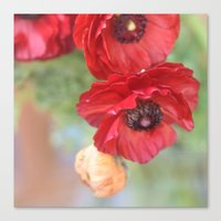 ruby Canvas Prints featuring Ruby by Lisa Argyropoulos