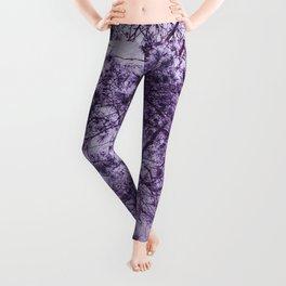 Beautiful Pine Tree Silhouette Purple Color #decor #society6 #buyart Leggings
