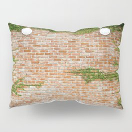 Leafs and wall lights Pillow Sham