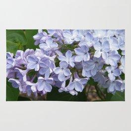 Lilac Beauty by Teresa Thompson Rug