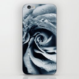 Rose - powder blue iPhone Skin