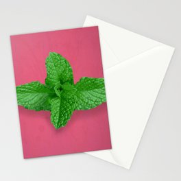 Mint on Pink Stationery Cards