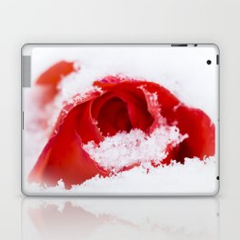 A lone rose resting in the snow after a late London snowstorm in March Laptop & iPad Skin