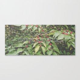 Bush Honeysuckle Sucks Canvas Print