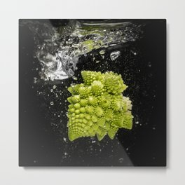 romanesco sprouts in the water Metal Print