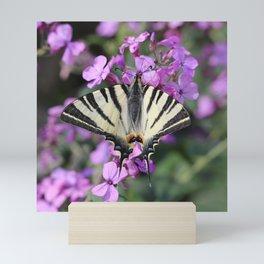 Scarce Swallowtail On Pink Flowers Mini Art Print