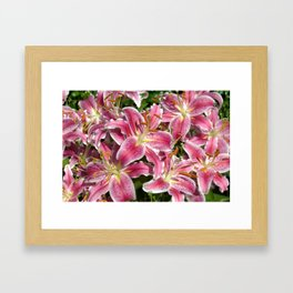 TT's Lilies Framed Art Print