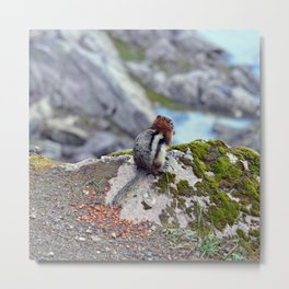 Little Lake Lookout Metal Print