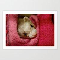 ferret Art Prints featuring Ferret by Sabrina Jennis