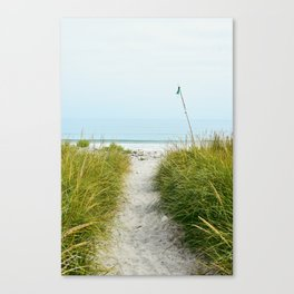 Beach Path to the Sea Canvas Print