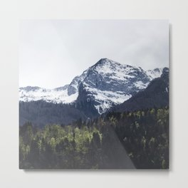 Winter and Spring - green trees and snowy mountains Metal Print