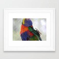 Colorful Bird Framed Art Print