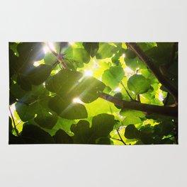 Canopy Rug