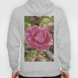 Vintage Pink Hydrangea Hoody