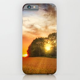 Wheat field at sunset iPhone Case