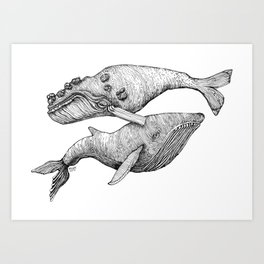 A Couple Of Whales  by Michelle Scott of dotsofpaint studios Art Print