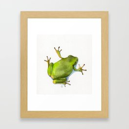 Little Green Tree Frog Framed Art Print