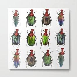 Beetles on the wall Metal Print