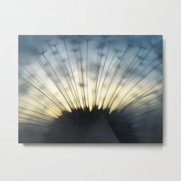 Dandelion & Sun II. Metal Print