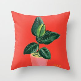 Point & Shoot - Ficus Throw Pillow