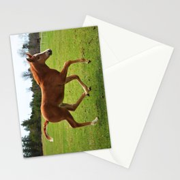 Little Running Man (horse) Stationery Cards