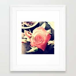 Morning Rose Framed Art Print