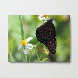The monarch and the ant Metal Print