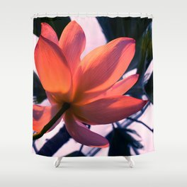 Big flower Shower Curtain
