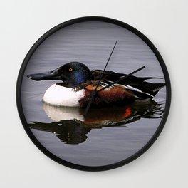Shoveler Duck Wall Clock