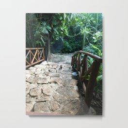 foresta messicana Metal Print