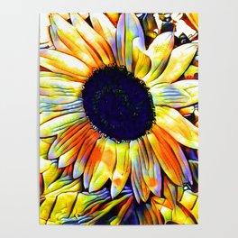 Blushing Sunflower Poster